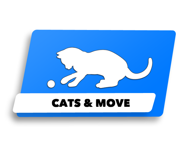 cats & move